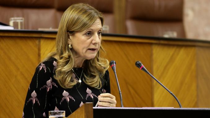 Intervención de Marina Álvarez en el Parlamento andaluz