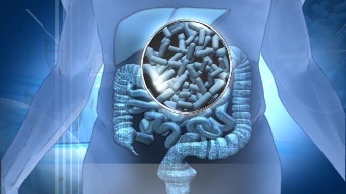 Los probióticos ayudan a prevenir infecciones intestinales