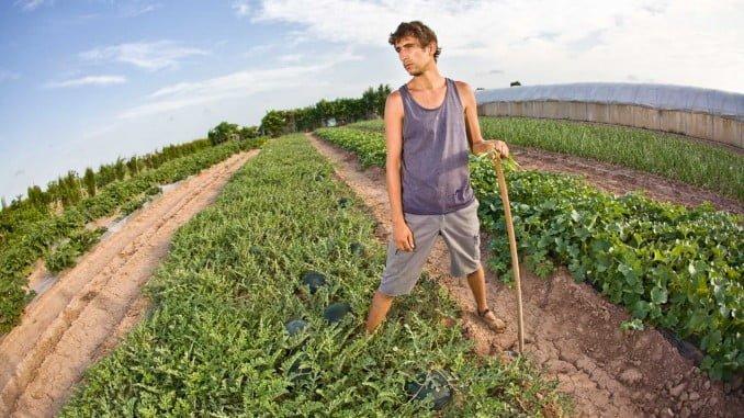 Los agricultores jóvenes comienzan esta semana a percibir las ayudas de la PAC