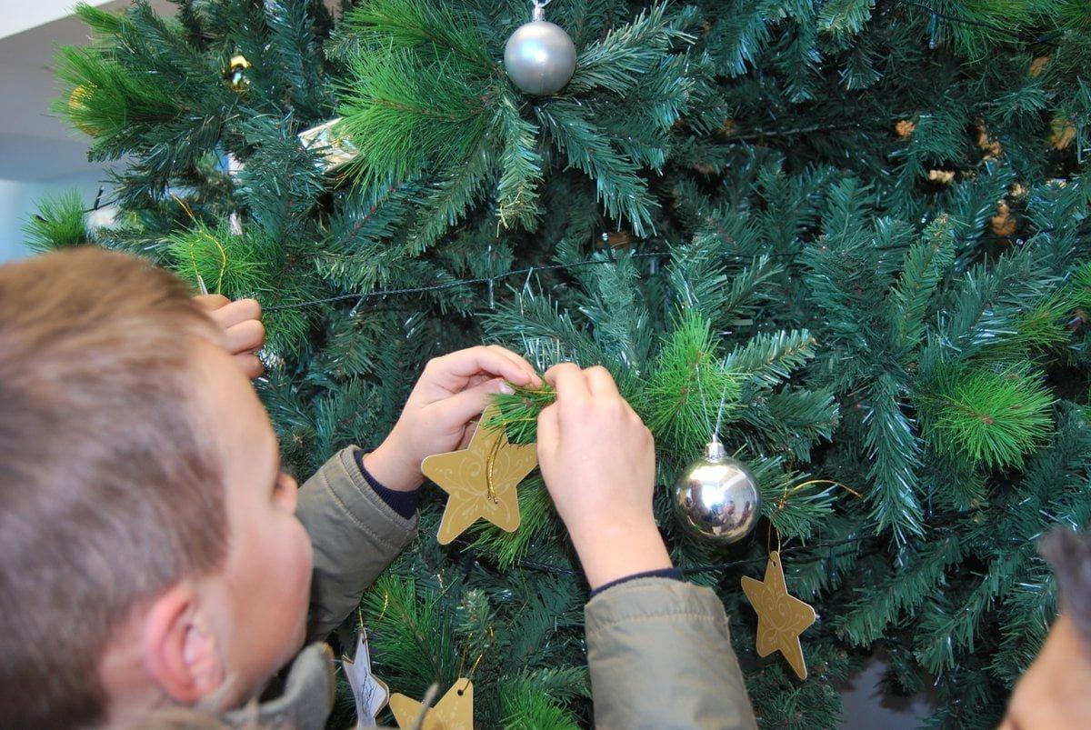 Los visitantes colocan una estrella con un deseo en el árbol de la Comunidad de Regantes de Palos