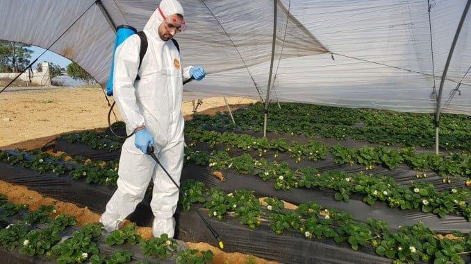 Los productos de ZVG están relacionados con la protección e higiene laboral