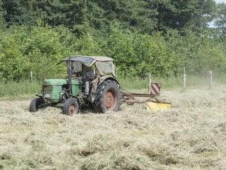 Agricultura cuenta con 6.655 parados menos en diciembre en Andalucía