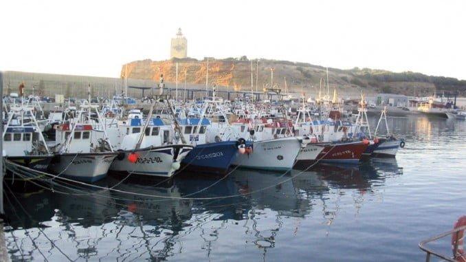 El sector reclama ayudas urgentes ante el cierre del caldero de la chirla en el Golfo de Cádiz