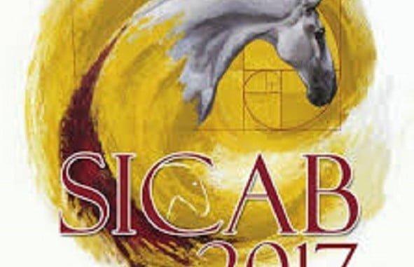 Cartel de la edición anterior de SICAB