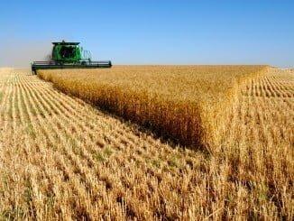 También se ha decidido mantener invariable la figura del agricultor activo, a pesar de que el Reglamento Omnibus permitía su flexibilización