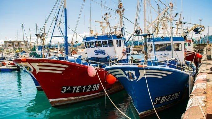 Andalucía pediría ayudas para el sector si no se validara el acuerdo de pesca entre Marruecos y la UE