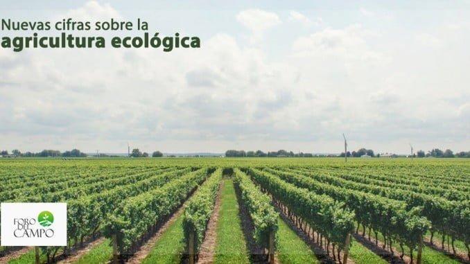 Fomentar el consumo interno y mejorar la comercialización de productos ecológicos es uno de los objetivos del MAPAMA