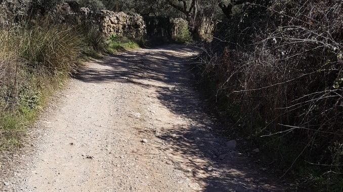 Los caminos rurales son fundamentales para la agricultura, la ganadería y el turismo rural