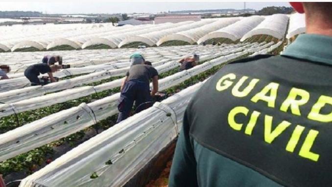 El operativo de seguridad de la Guardia Civil en el campo se extiende hasta el 30 de abril