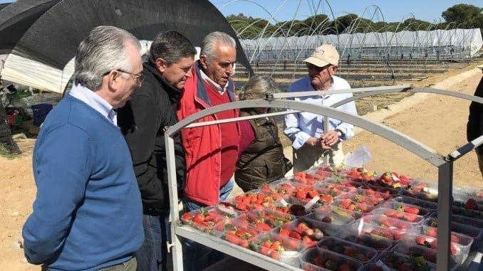 Visita a las instalaciones de la Finca experimental de Cartaya
