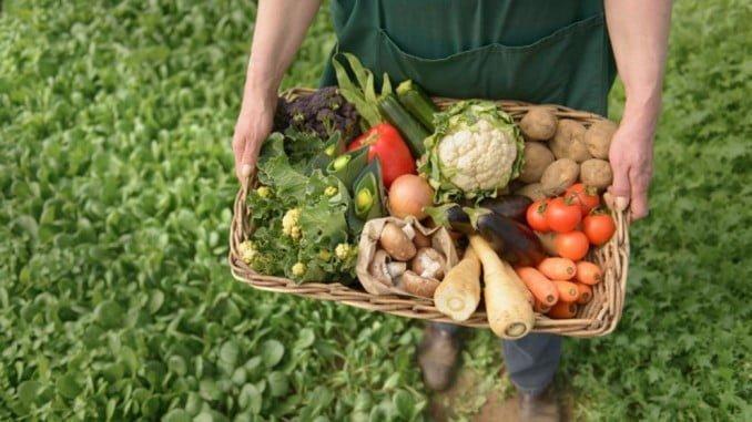 Entre otras cosas se pretende fomentar el consumo interno y mejorar la comercialización de productos ecológicos