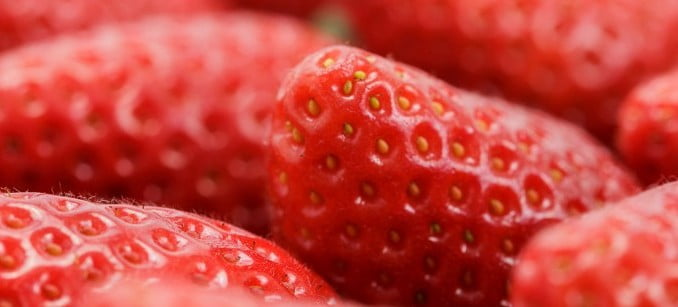 Cuna de Platero repartirá fresas durante la Feria de Época