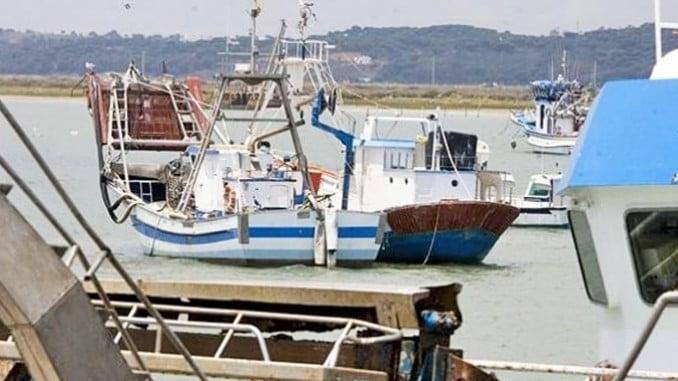 En Huelva en los puertos de Isla Cristina y Punta Umbría, la pesquería de la sardina es muy importante