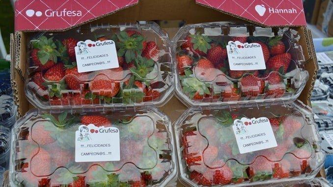 La fresa es una fruta idónea para tomar antes y después de practicar ejercicio intenso