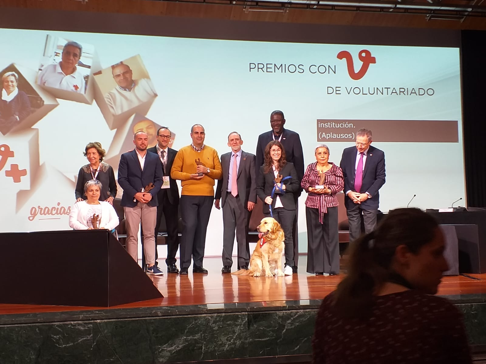 Cruz Roja Premio Voluntariado (2)