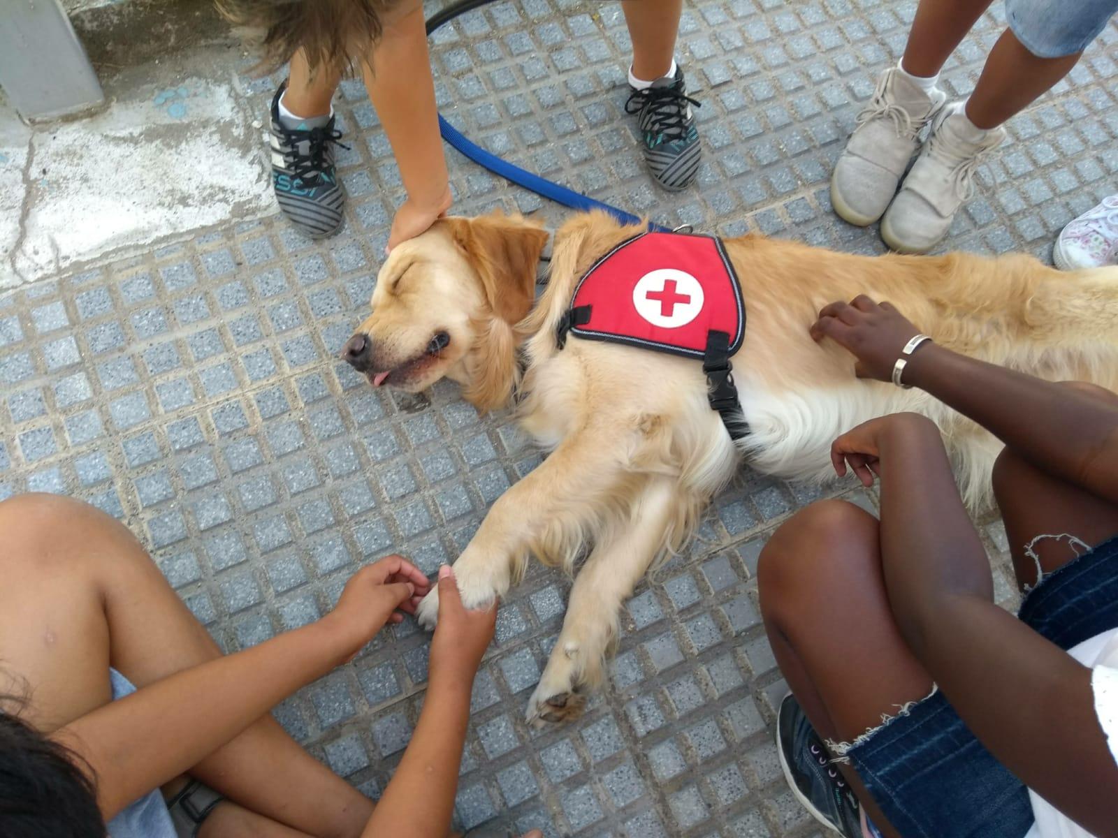 Cruz Roja Terapia  Lenny y Noelia 2 (1)