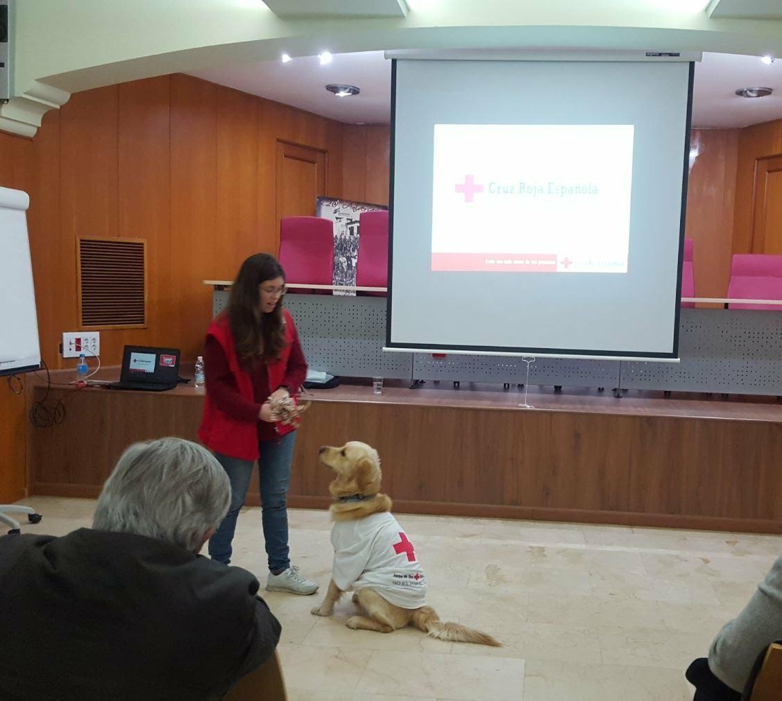Cruz Roja terapia Lenny y Noelia 1 (1)