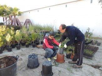 El Ayuntamiento de Huelva busca facilitar el entorno laboral de los jóvenes discapacitados intelectualmente