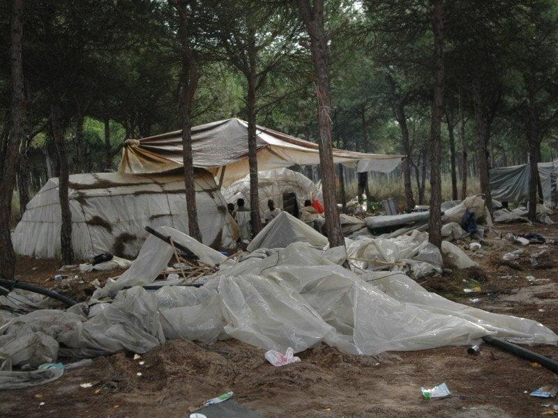 Asentamientos de chabolas en la provincia