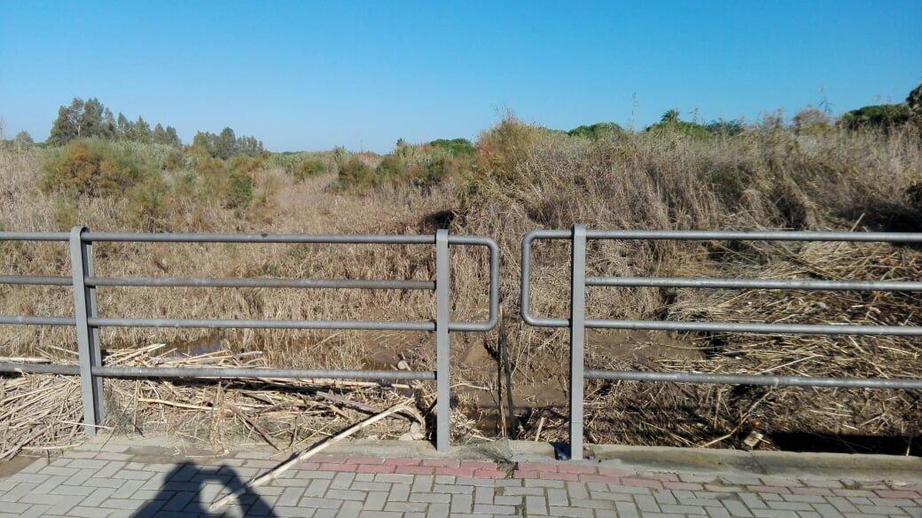 El cauce del arroyo de La Dehesa sigue en estado de total abandono y los vecinos van a presentar quejas ante el Defensor del Pueblo.