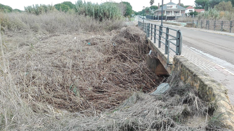 Los vecinos dicen que el arroyo se desbordó por su abandono