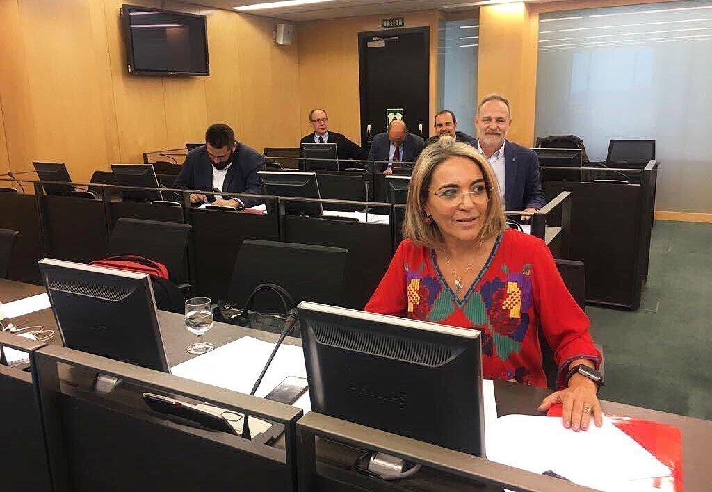La diputada socialista Pepa González Bayo en la Comisión de Agriculgura del Congreso